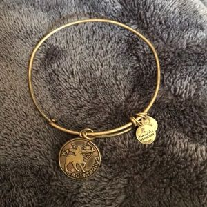 Jewelry - Sagittarius bracelet